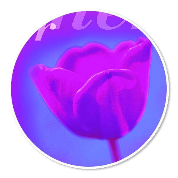 kan grafisch ontwerp vleuten logo online